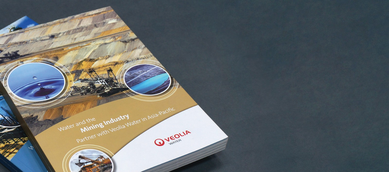 Veolia-professional-marketing-communication-collateral-2